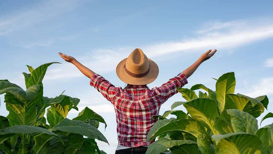 comment devenir agriculteur