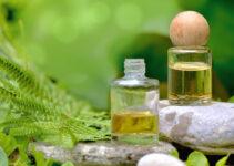 4 conseils avant de consulter un naturopathe