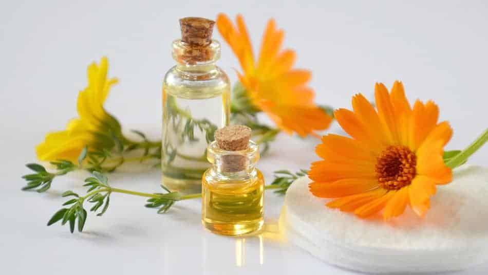Pourquoi choisir les cosmétiques bio