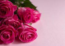 Pour quelle occasion livrer des fleurs?