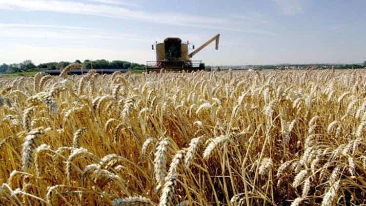 logiciels agricoles