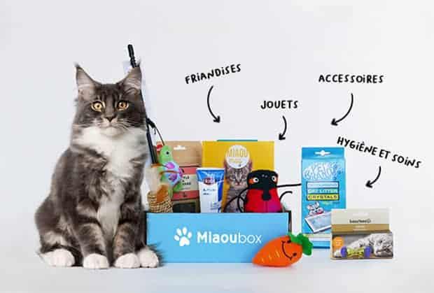 Miaoubox - Box cadeau pour chat