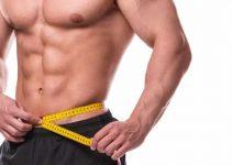 Musculation : la prise de masse et la sèche