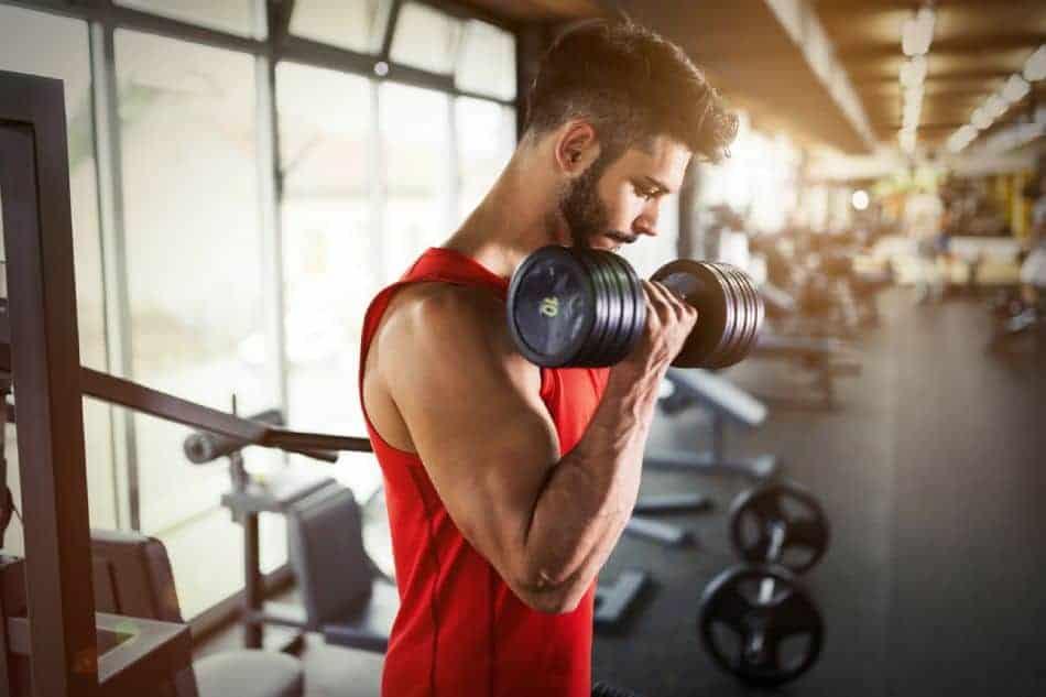 Musculation- Sèche et prise de masse