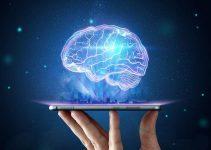 Neuralink – Le cerveau humain vu par Elon Musk