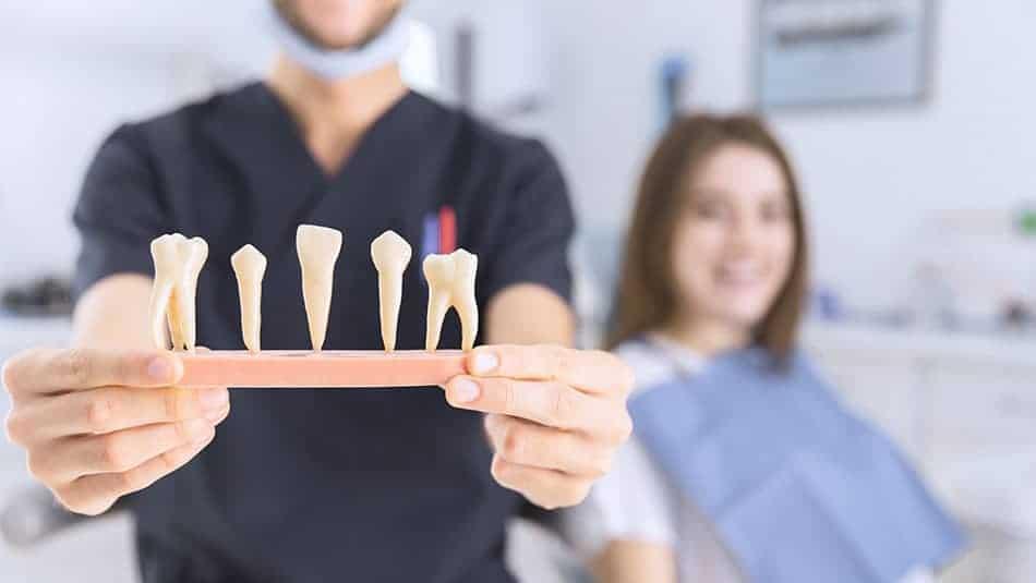 Le programme M'T Dents accessible à partir de 6 ans