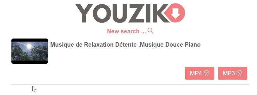 résultat convertisseur Youzik