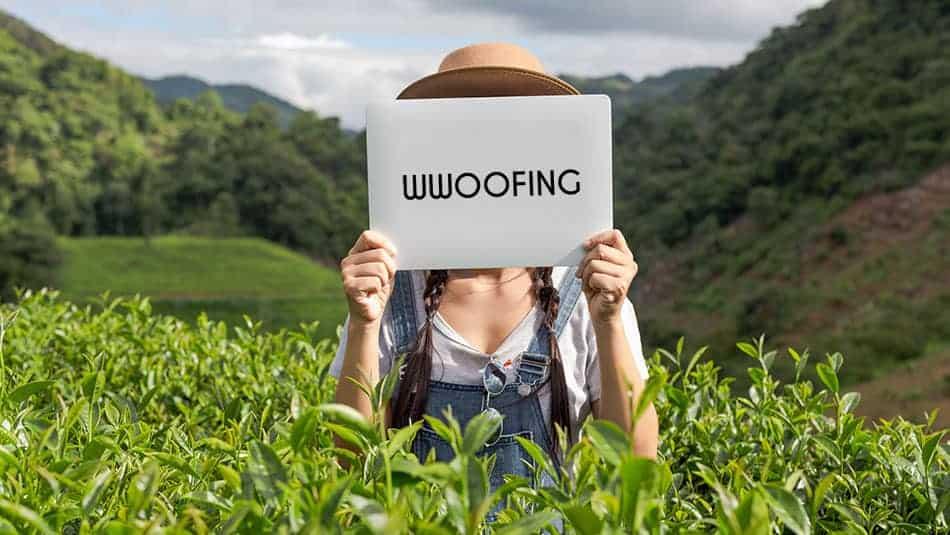 Wwoofing - Qu'est-ce que c'est